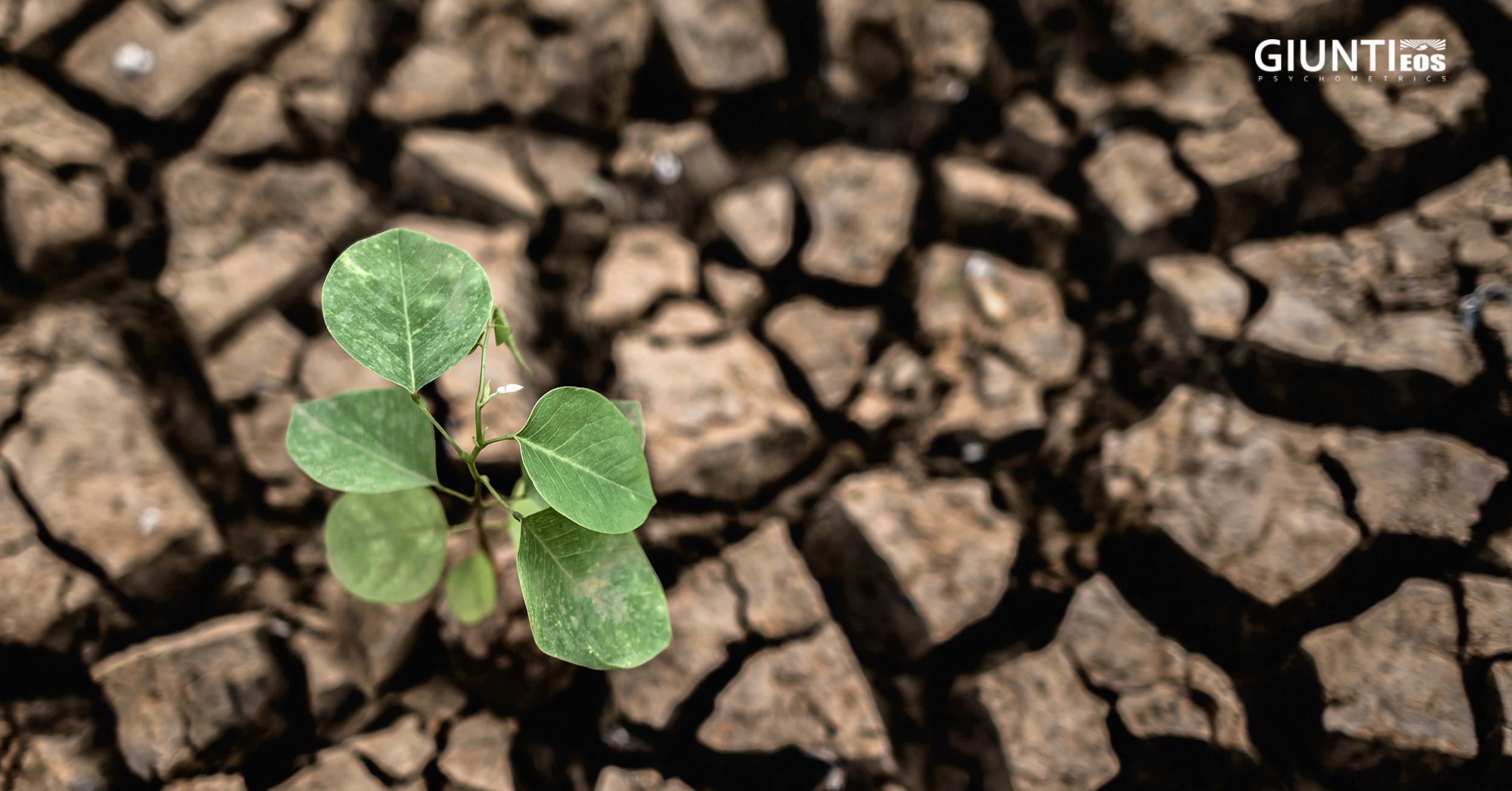 """Resiliencia, adaptación y la nueva """"normalidad"""""""